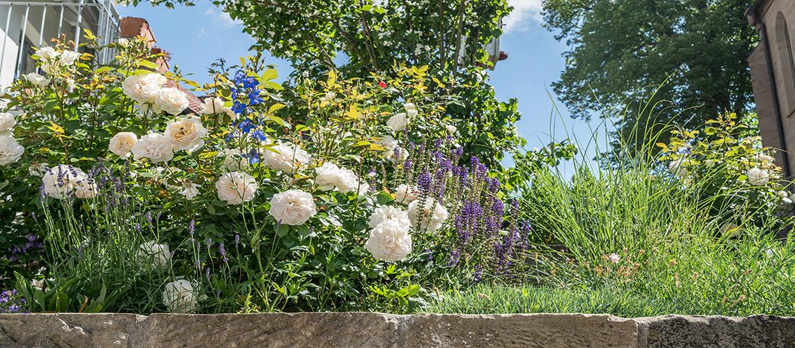 Naturgarten mit Natursteinmauer